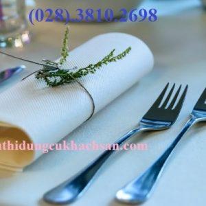 Nĩa chính inox cao cấp TPE68004
